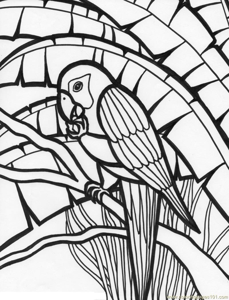 colouring picture of parrot free printable parrot coloring pages for kids colouring of picture parrot