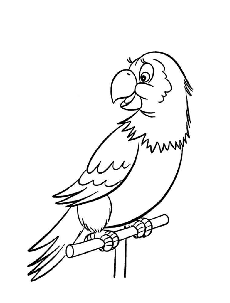 colouring picture of parrot free printable parrot coloring pages for kids colouring of picture parrot 1 1