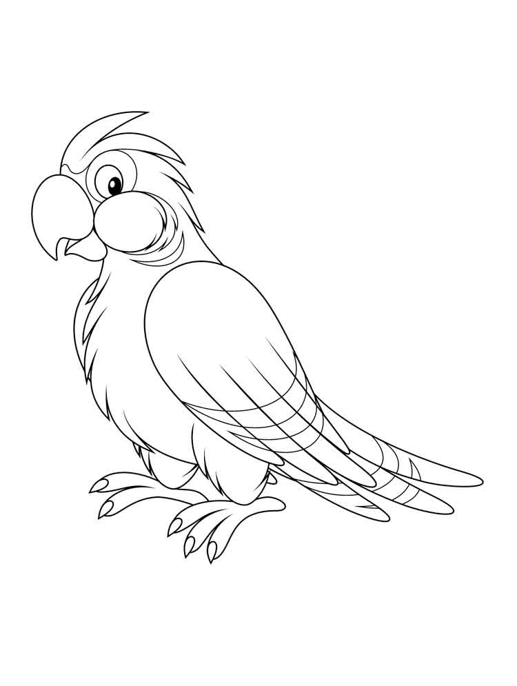 colouring picture of parrot free printable parrot coloring pages for kids of colouring parrot picture