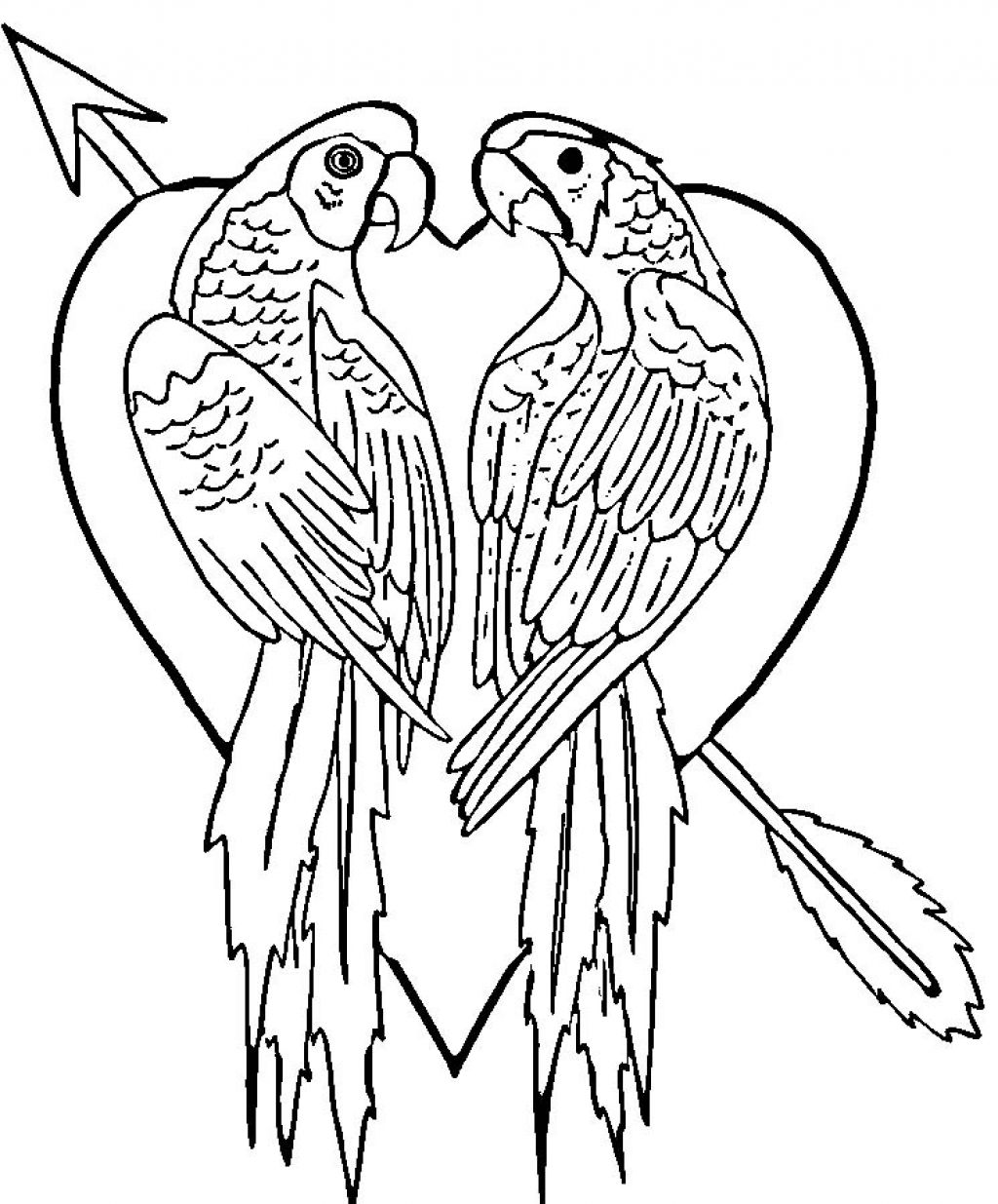 colouring picture of parrot parrot looking for food coloring page download print parrot colouring of picture