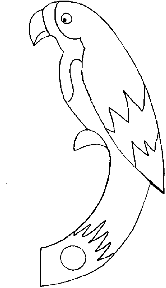colouring picture of parrot parrotlet parrot picture of colouring