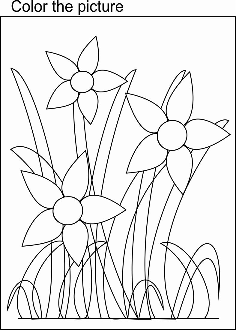 colouring pictures of flowers clipart simple flower bw flowers of pictures colouring
