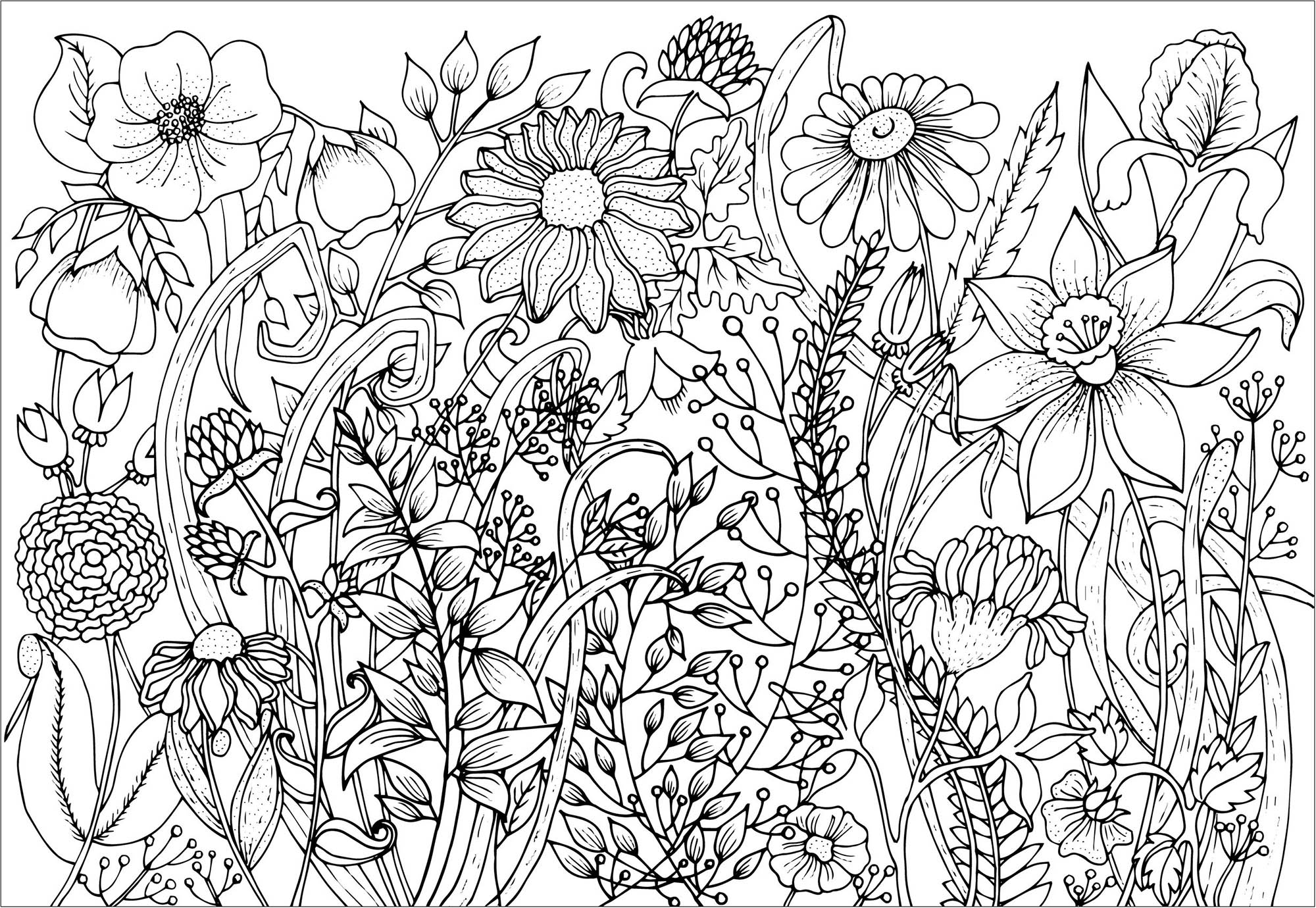 colouring pictures of flowers cute spring flowers flowers adult coloring pages of colouring pictures flowers