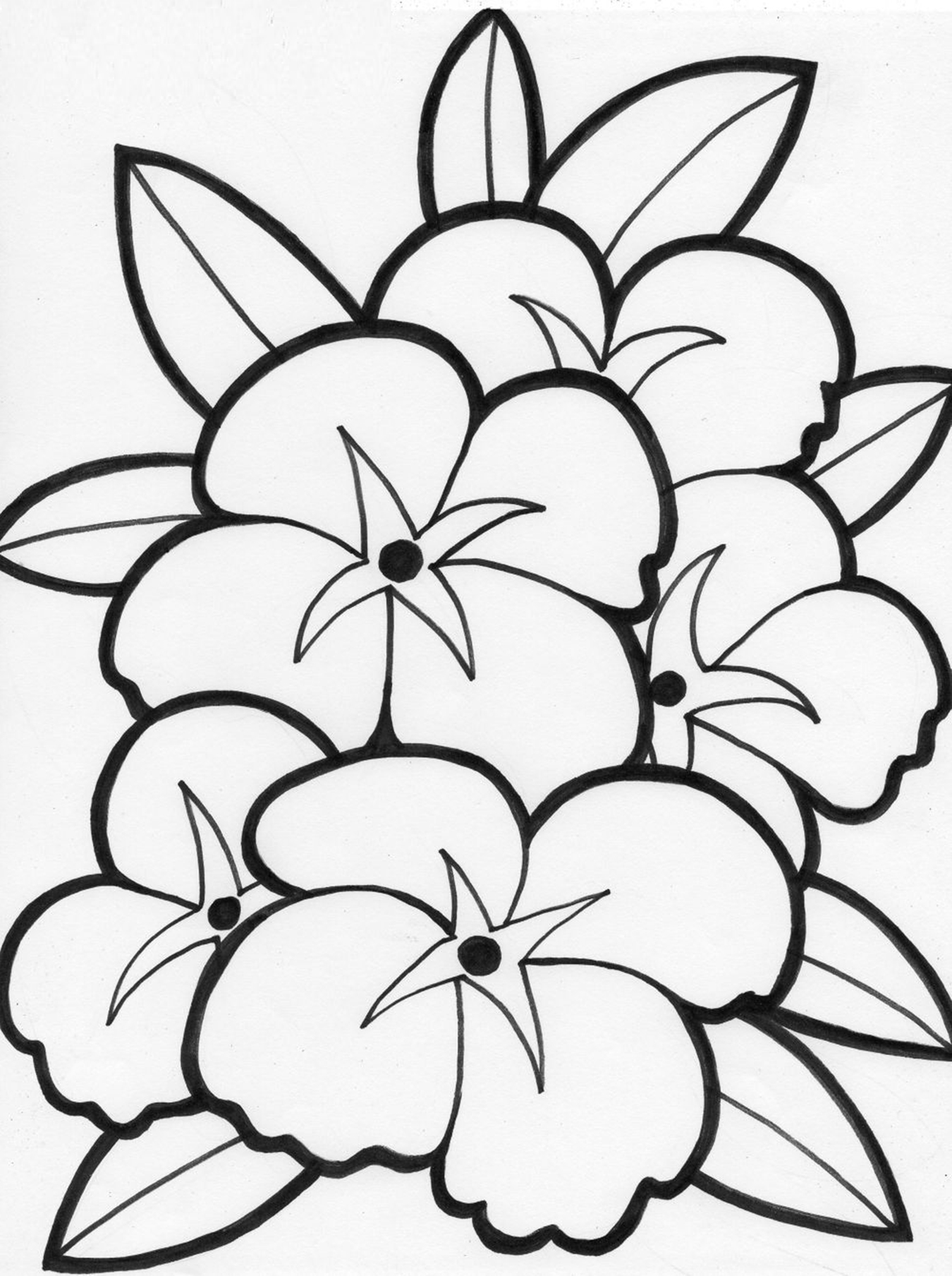 Colouring pictures of flowers