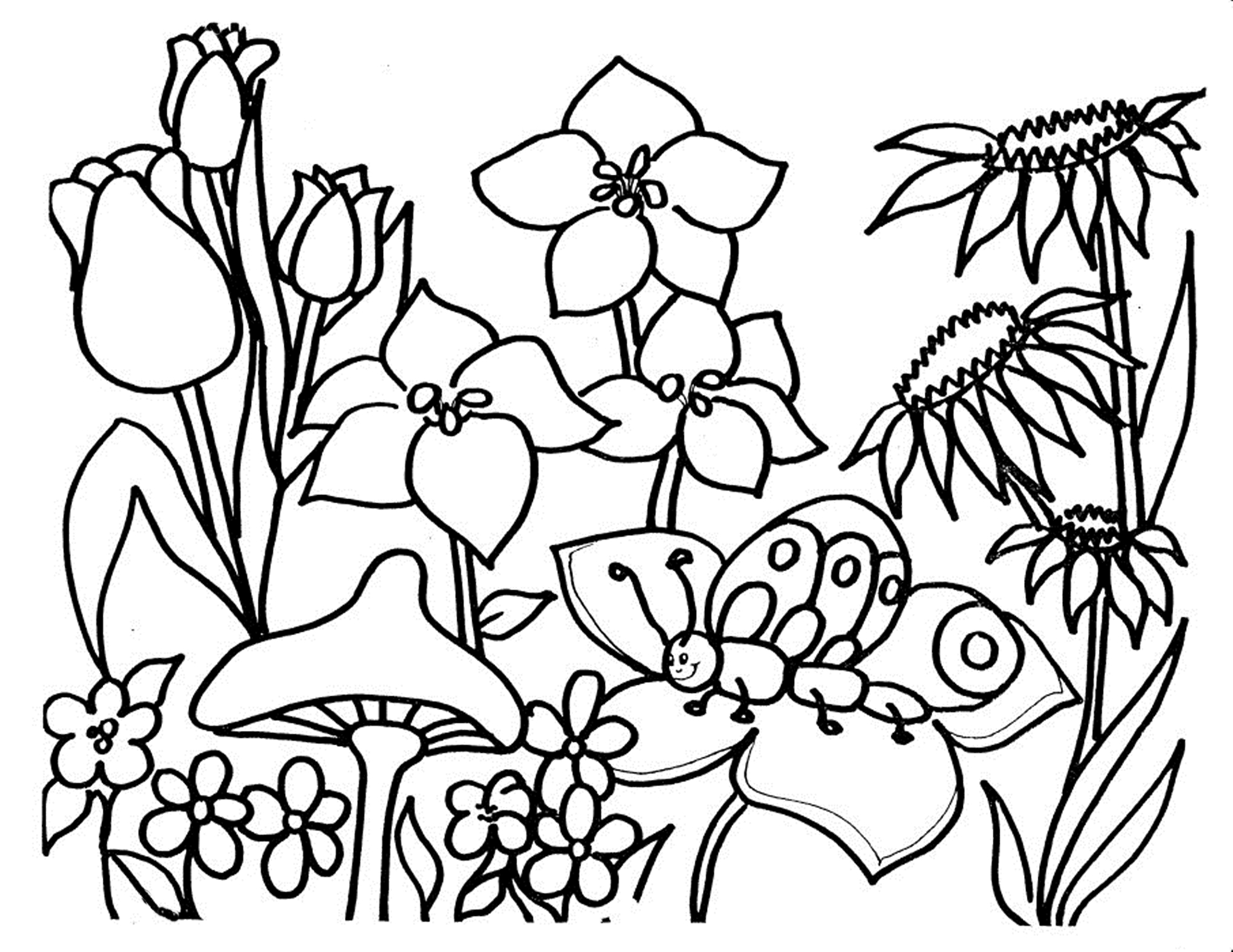 colouring pictures of flowers free printable flower coloring pages for kids best pictures flowers of colouring 1 1