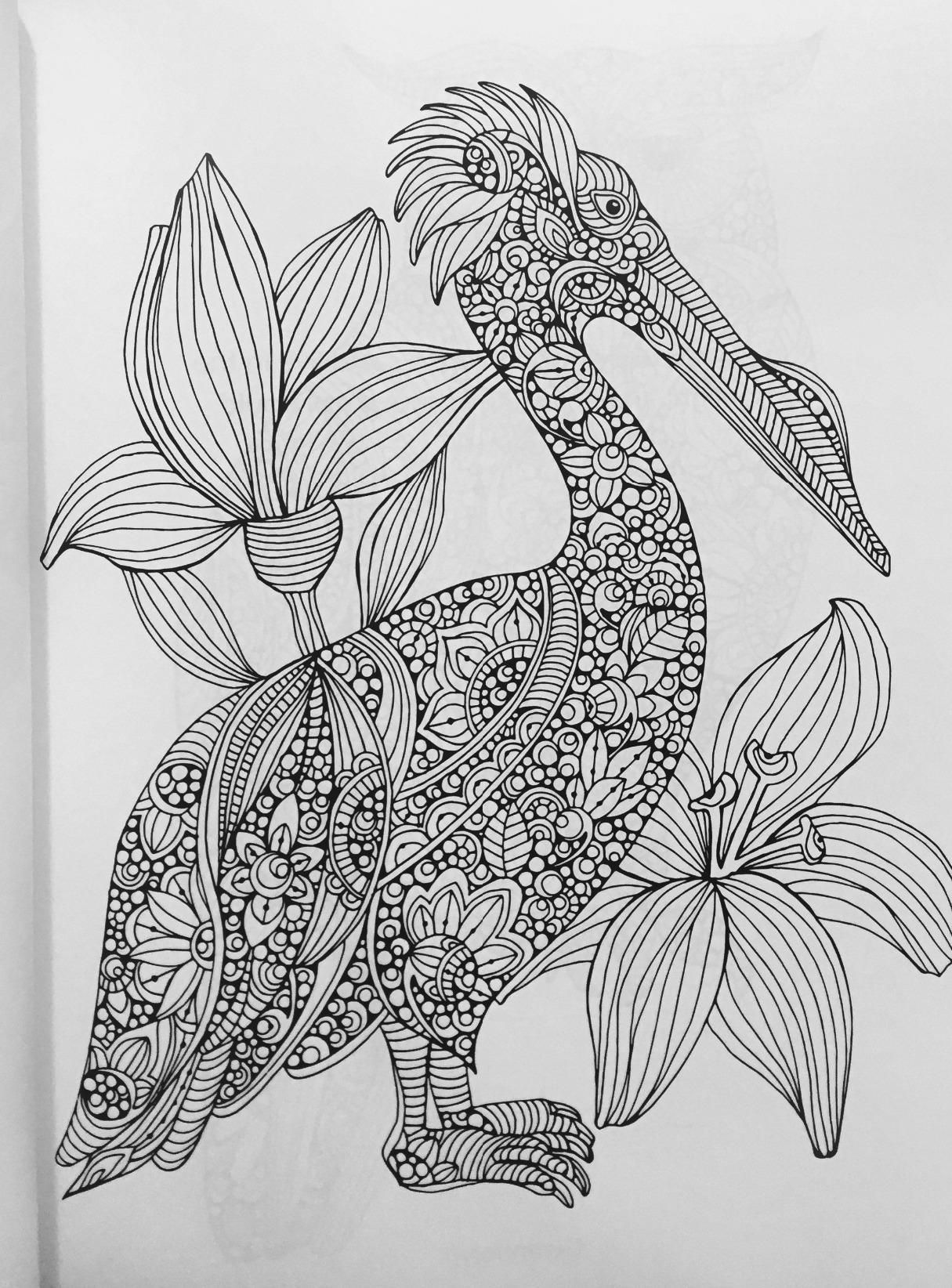 creative colouring pages 26936 beste afbeeldingen over adult coloring books op colouring creative pages