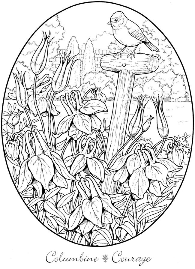 creative colouring pages creative haven dream horses coloring book dover colouring creative pages