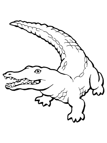 crocodile color free coloring pages crocodiles crocodile color