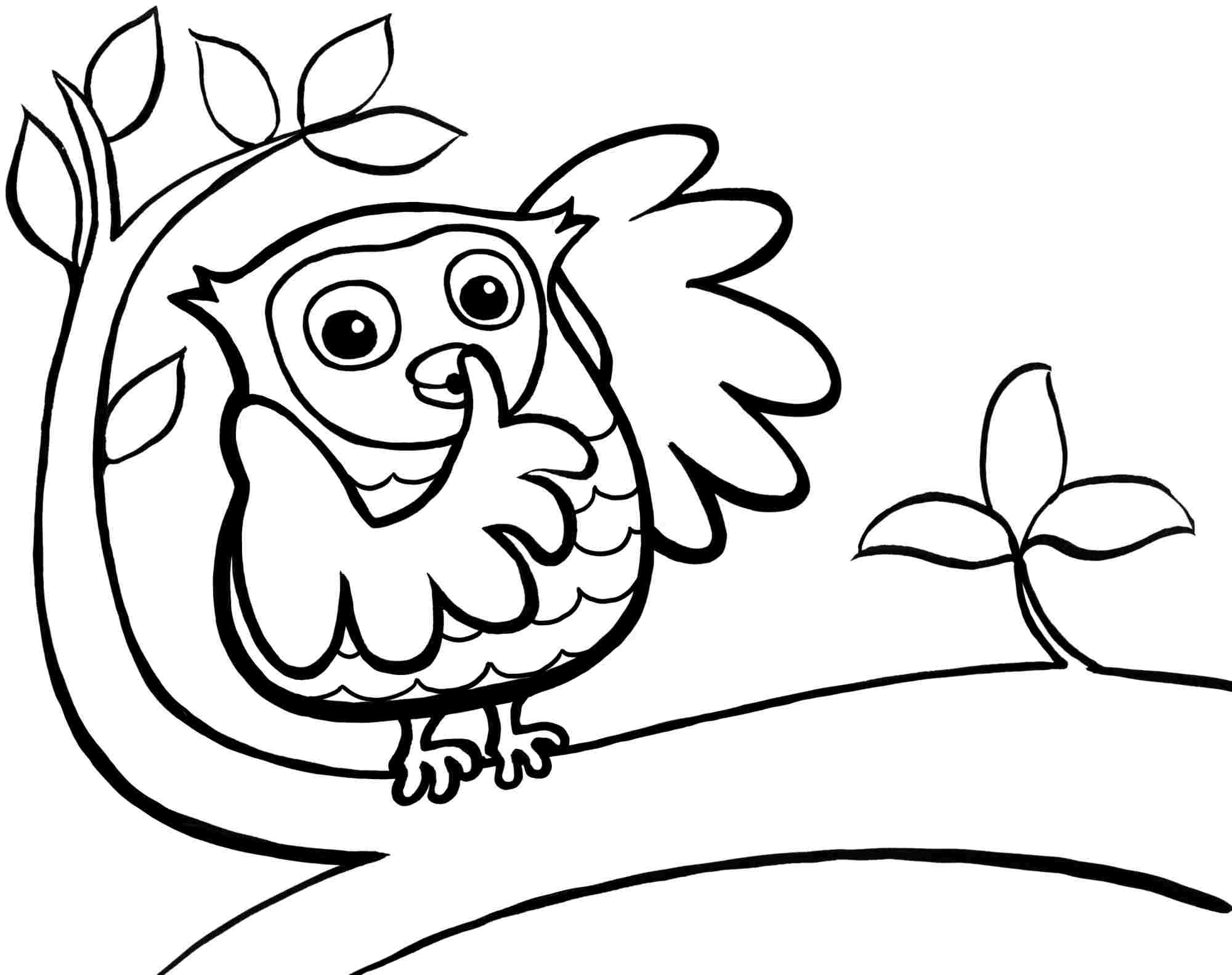 cute coloring pages of owls cute owl coloring pages to print coloring home of pages coloring owls cute