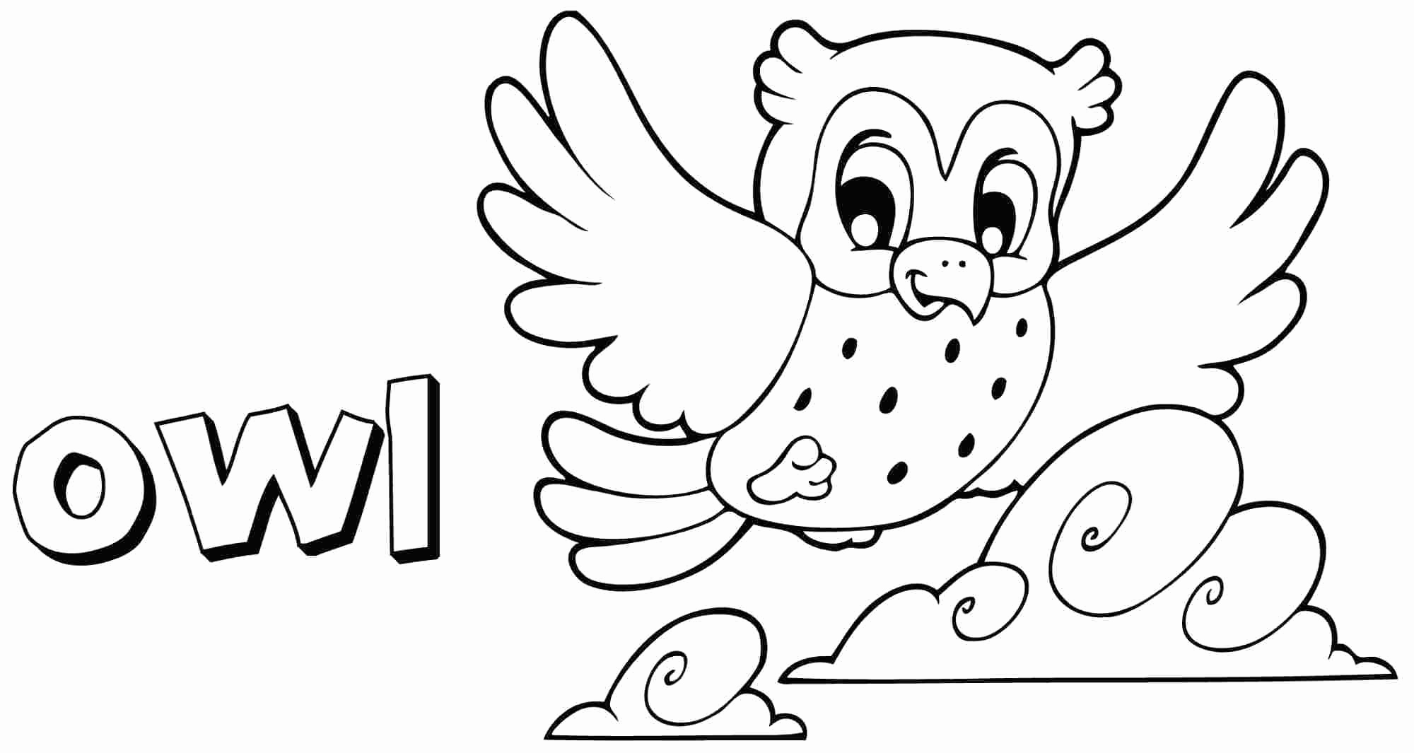 cute coloring pages of owls owl color drawing at getdrawings free download coloring cute owls of pages