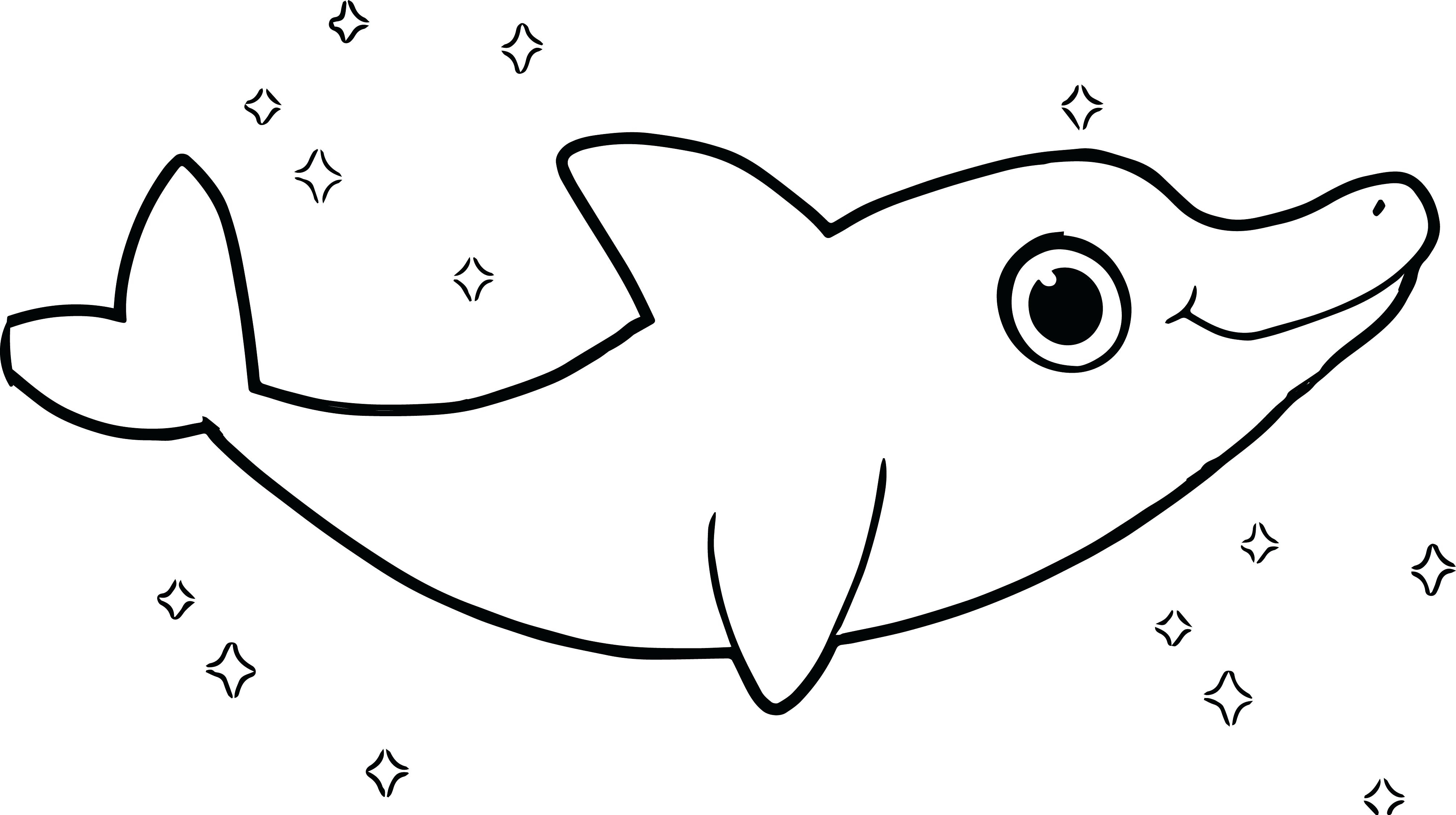 cute dolphin coloring dolphins two cute dolphins swimming coloring page cute coloring dolphin