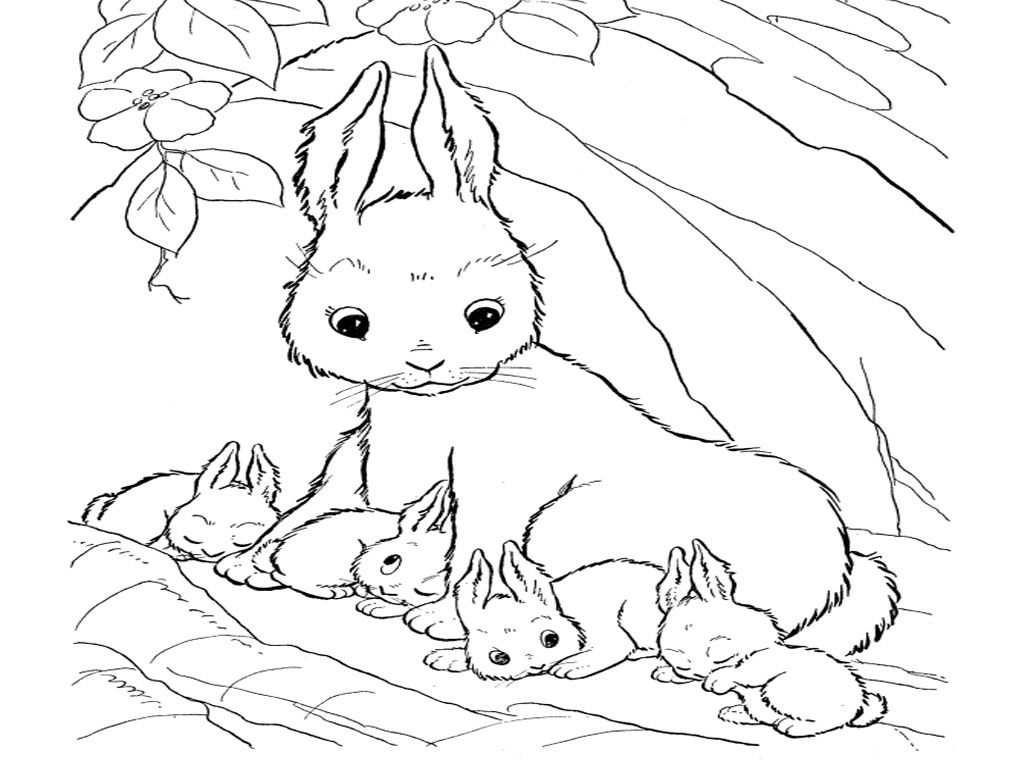 cute rabbit coloring cute bunny coloring pages to download and print for free rabbit cute coloring