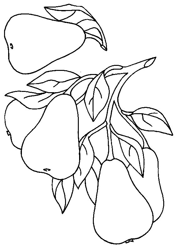 daniel eats vegetables coloring sheet daniel eats vegetables coloring sheet daniel eats vegetables coloring sheet