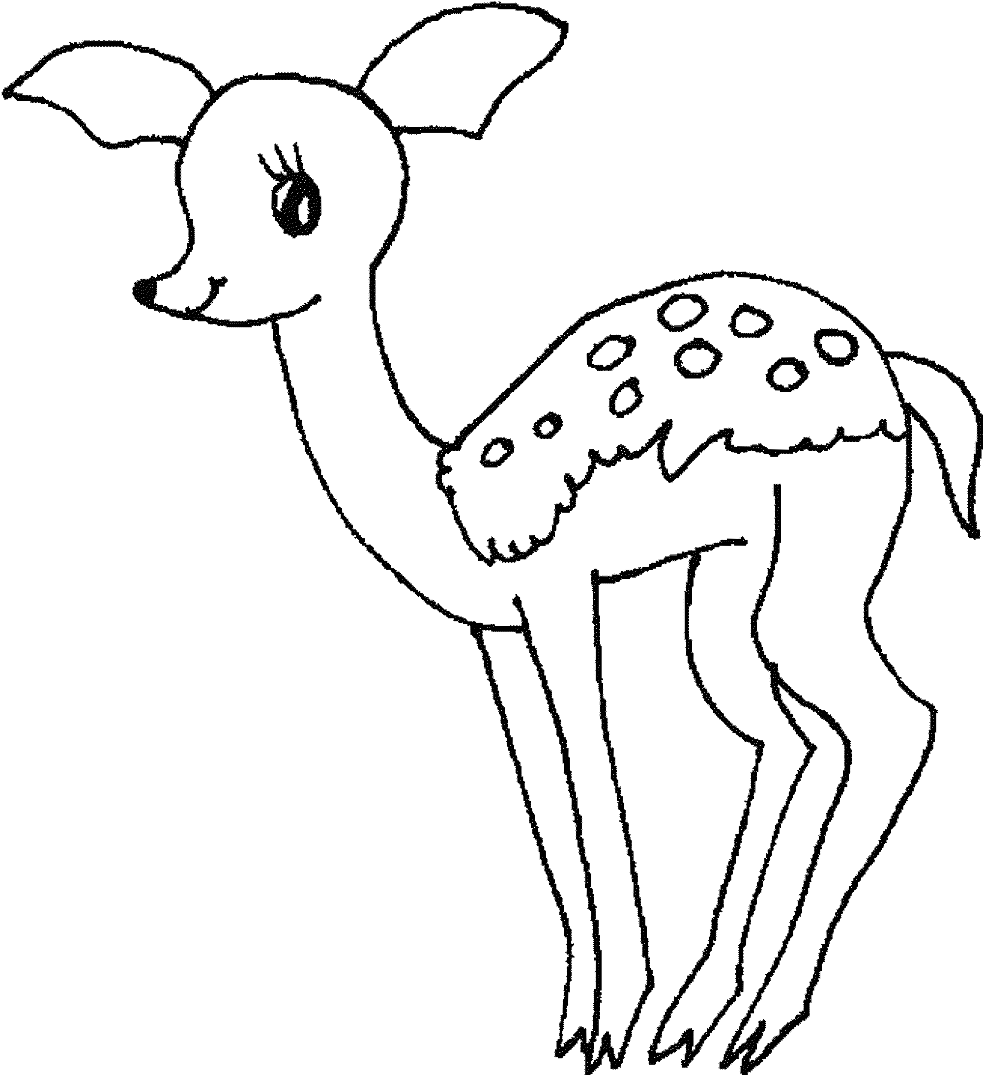 deer color pages baby deer coloring page coloring home deer pages color