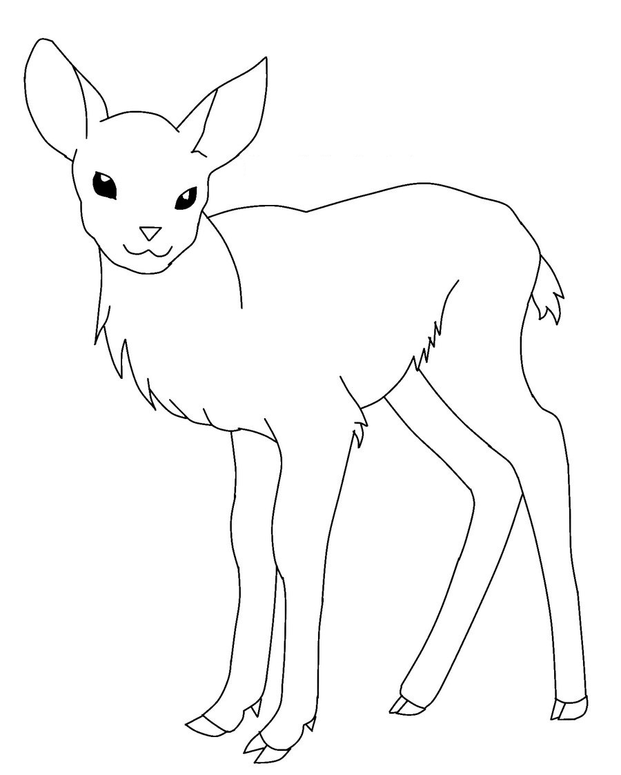 deer color pages white tailed deer coloring pages to print coloring home color deer pages