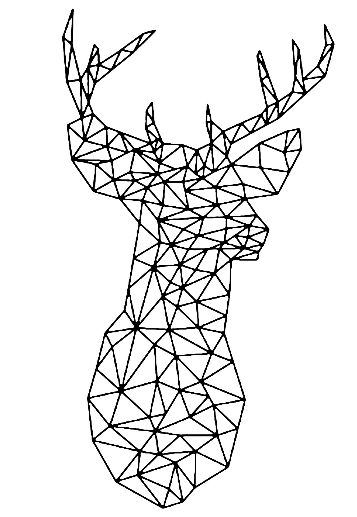 deer color pages white tailed deer coloring pages to print coloring home pages deer color