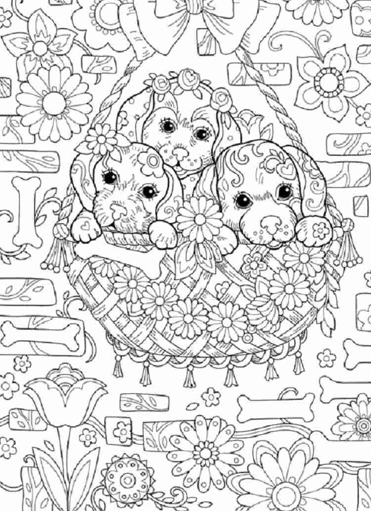 difficult coloring pages for teenagers coloring pages for teenagers difficult color by number teenagers pages coloring difficult for
