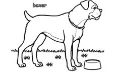 dog head coloring pages boxer dog head outline coloring pages best place to color pages dog head coloring