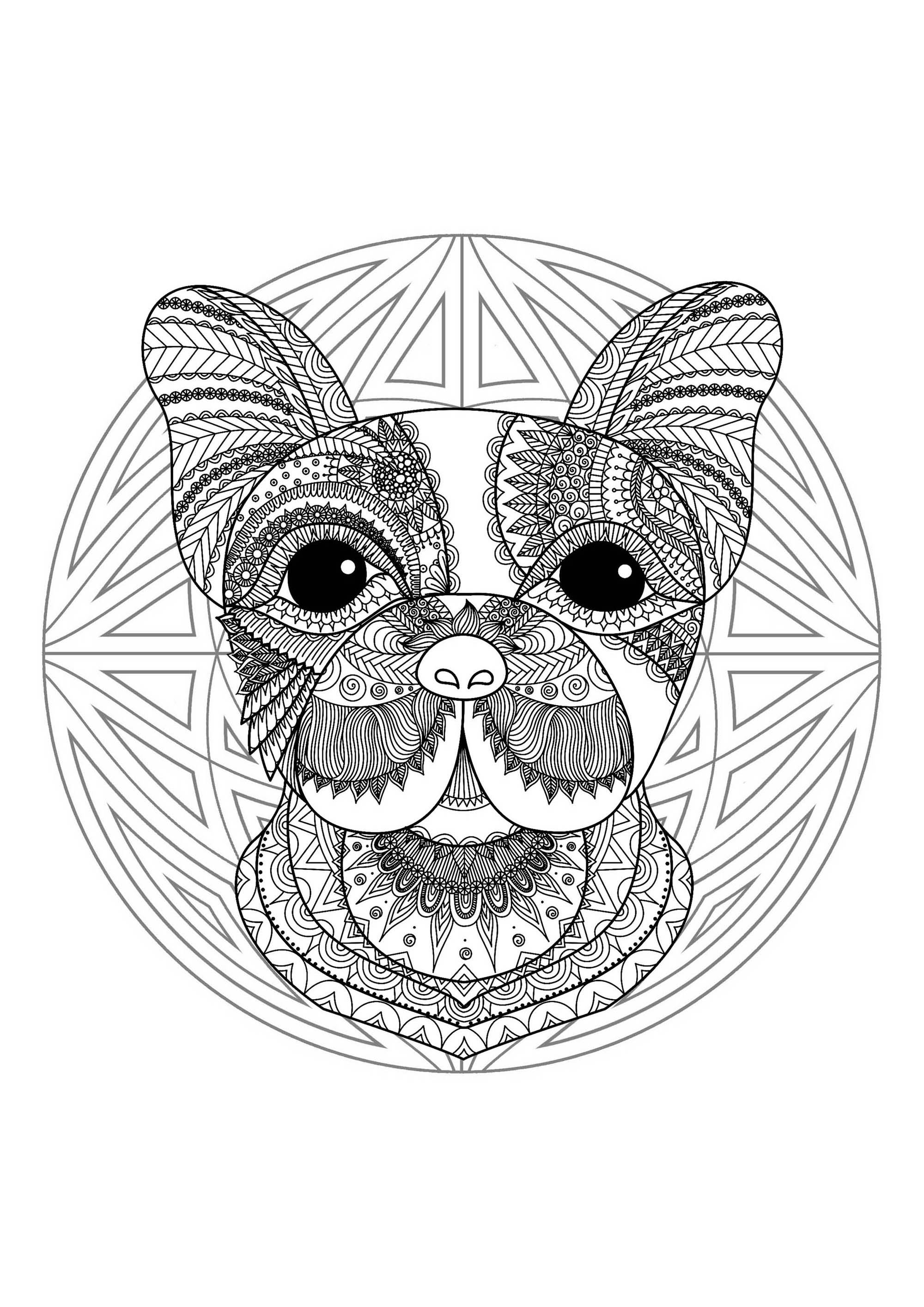 dog head coloring pages european shorthair puppy face coloring page free pet pages coloring head dog