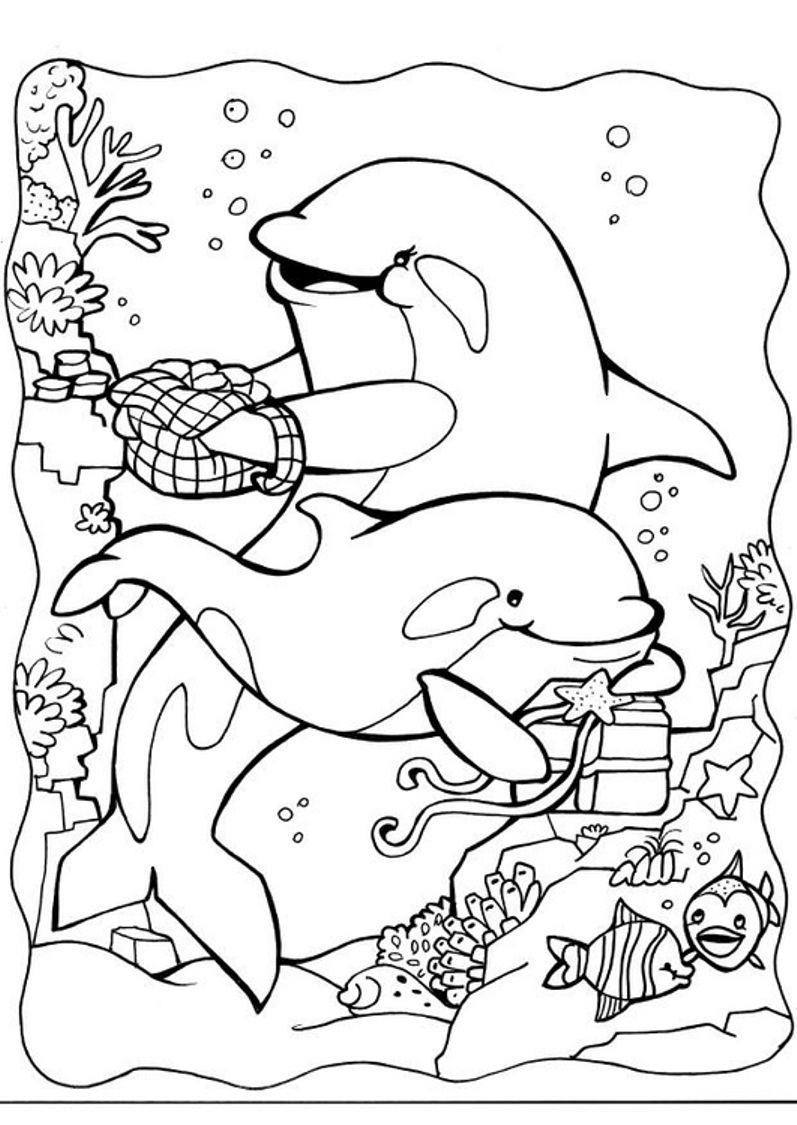 dolphin coloring pages free printable dolphin coloring pages download and print dolphin dolphin free printable pages coloring