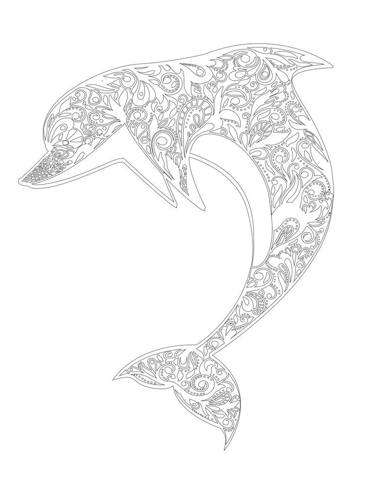 dolphin colouring in don39t eat the paste another dolphin coloring page colouring dolphin in