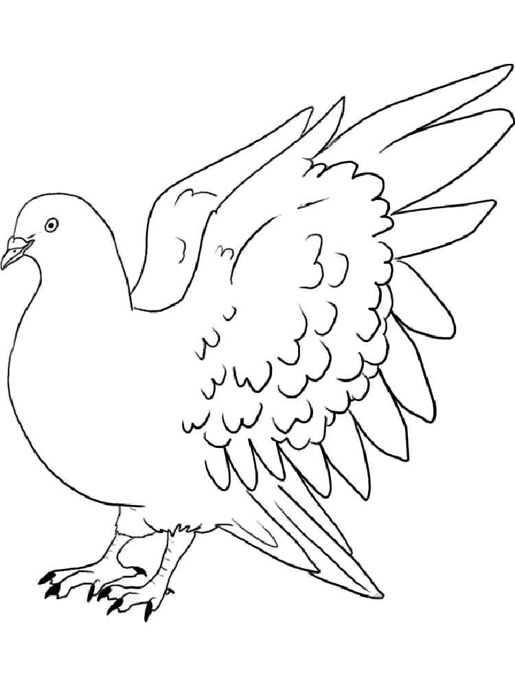dove bird coloring pages bird to color free printable coloring page flying dove dove pages bird coloring