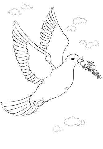 dove bird coloring pages dove coloring page twisty noodle coloring bird pages dove