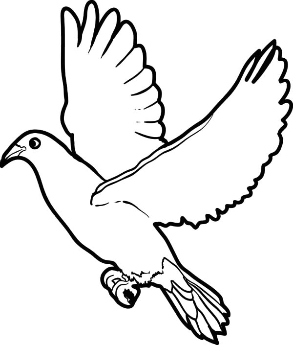 dove bird coloring pages fun coloring pages wedding coloring pages wedding love dove coloring pages dove bird