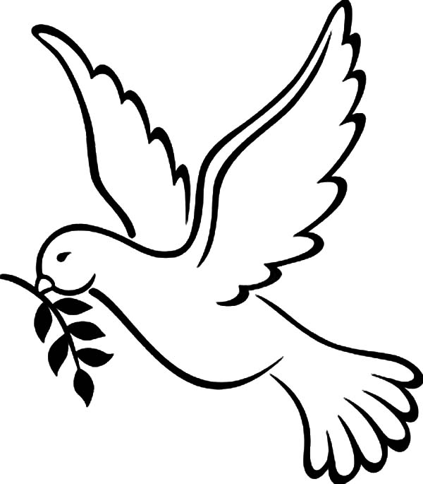 dove bird coloring pages mourning dove coloring page download free mourning dove pages bird dove coloring