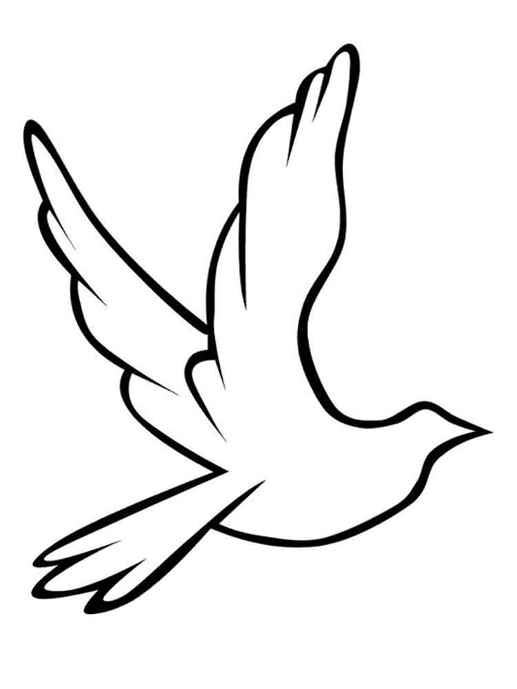 dove bird coloring pages peace dove coloring page at getcoloringscom free bird coloring dove pages