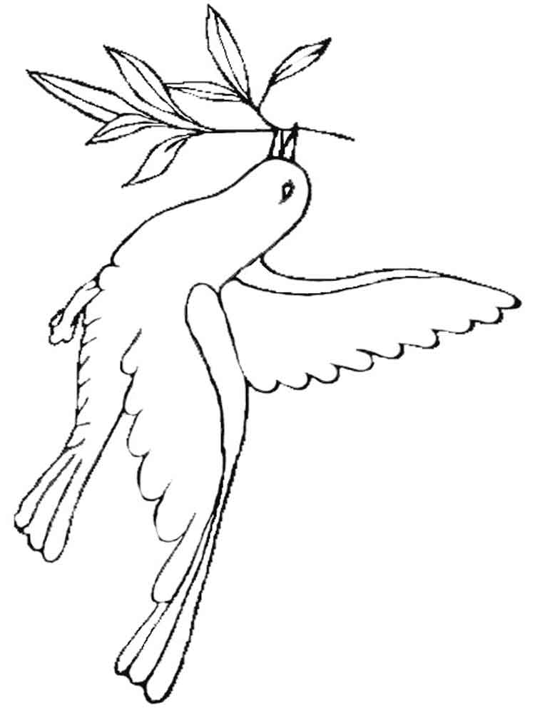 dove bird coloring pages peace dove coloring page at getcoloringscom free pages coloring dove bird