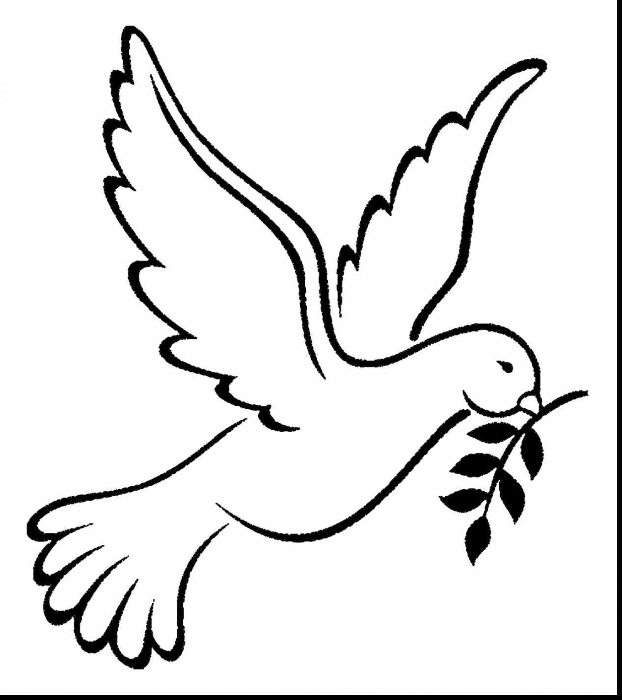 dove bird coloring pages read morefree dove bird coloring page bird coloring pages dove coloring bird