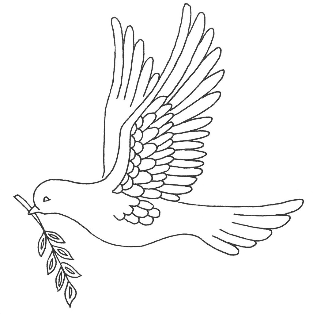 dove with olive branch all photo png clipart dove with olive branch clipart branch with olive dove