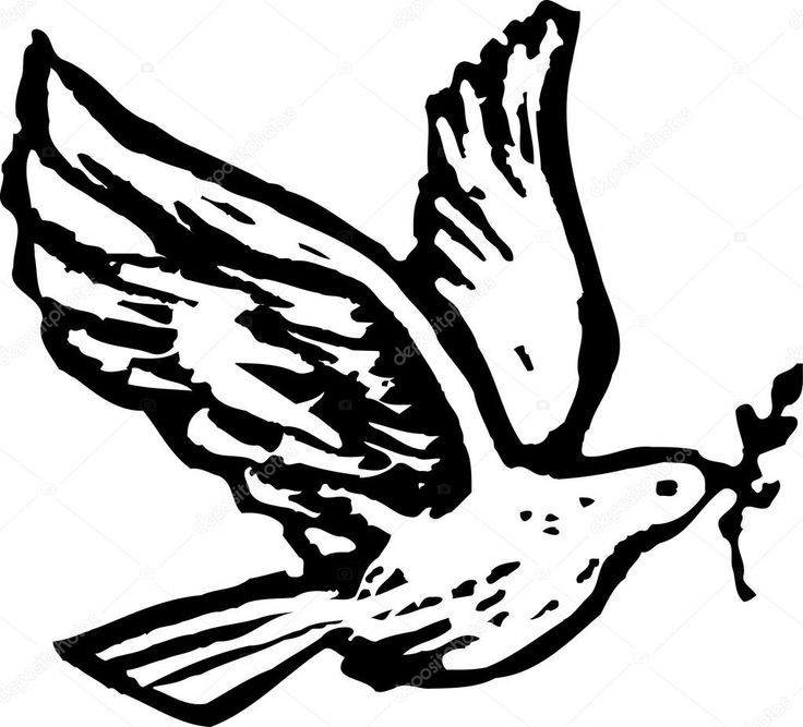 dove with olive branch dove of peace long sleeve shirts spreadshirt with dove branch olive