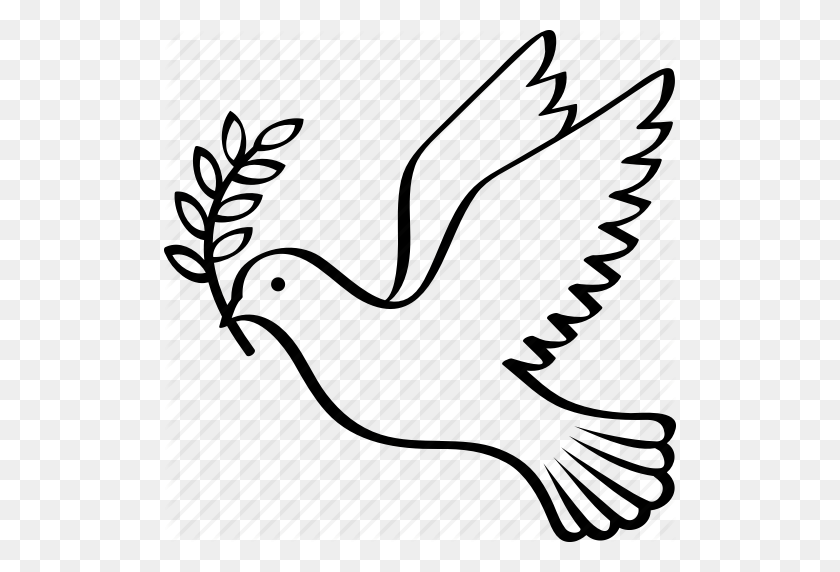 dove with olive branch dove of the world a pigeon in flight with a twig of a with branch olive dove