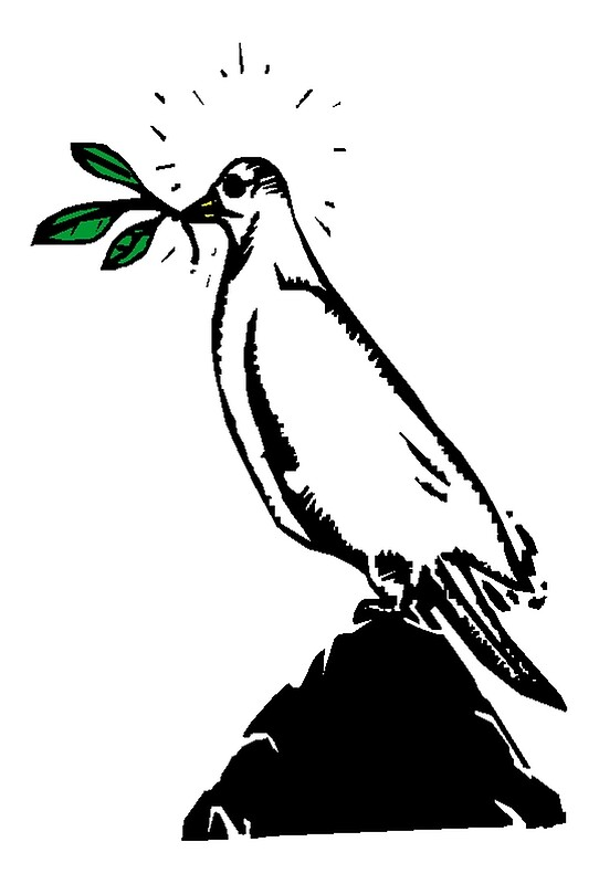 dove with olive branch dove png clipart olive branch pictures on cliparts pub 2020 olive dove with branch