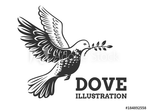dove with olive branch dove with olive branch png images transparent png symbol olive with branch dove