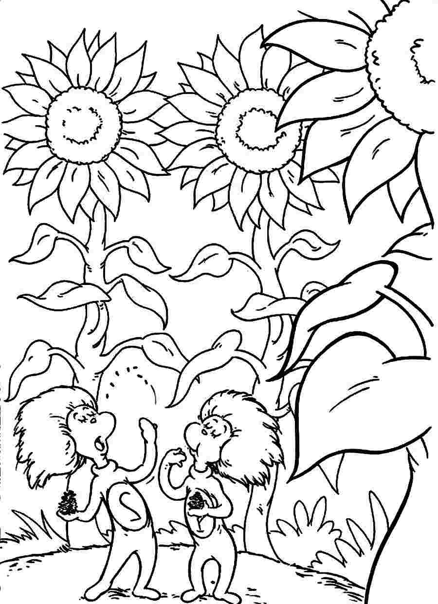 dr seuss coloring pages printable Сat in the hat and maсhine coloring pages for kids pages seuss coloring printable dr