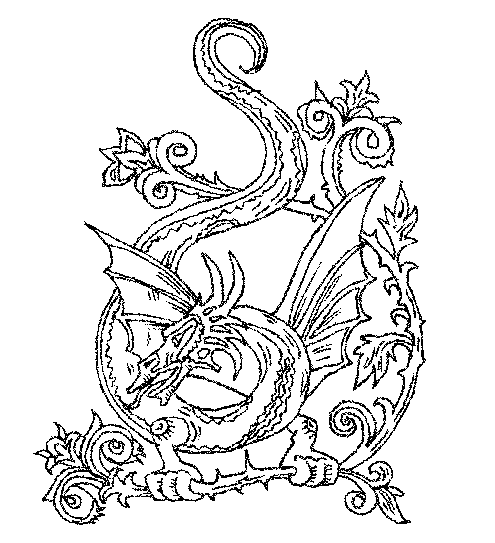 dragon coloring pages free color the dragon coloring pages in websites free dragon pages coloring