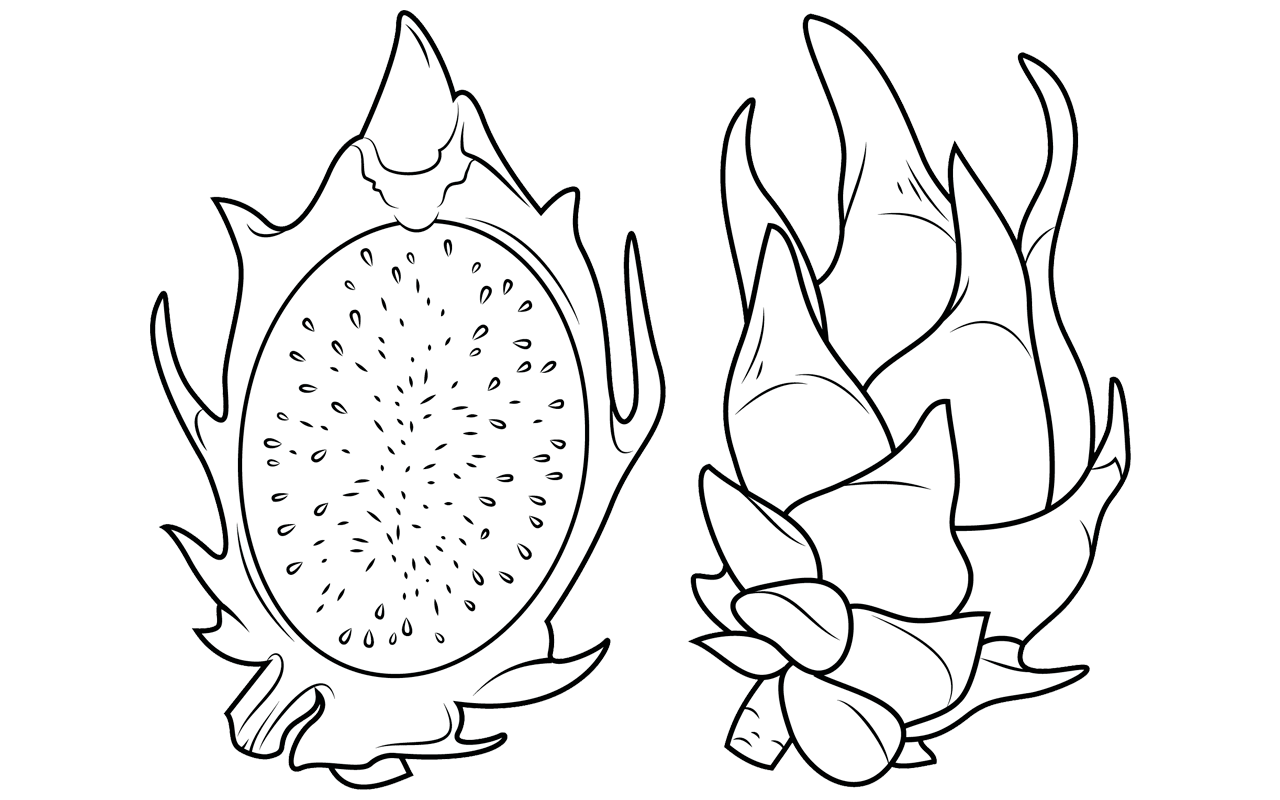 dragonfruit avocado page coloring pages dragonfruit