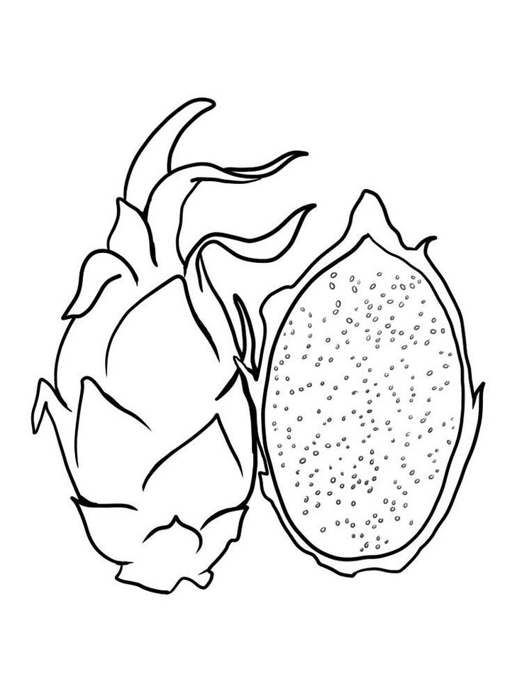 dragonfruit dragon fruit coloring pages to print free dragonfruit