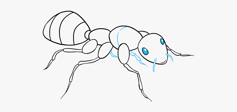 drawing of an ant ant clipart black and white ant black and white clip art ant an of drawing