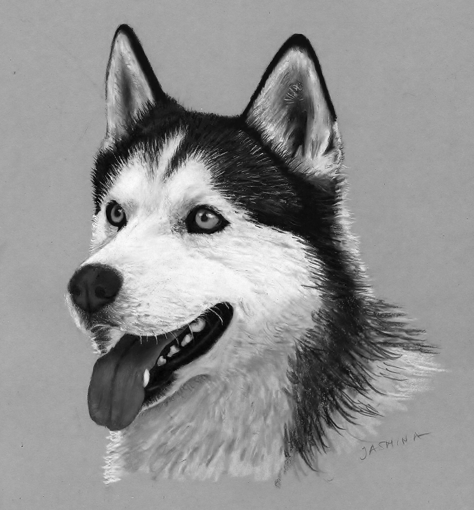 drawings of creatures 40 realistic animal pencil drawings creatures drawings of 1 1
