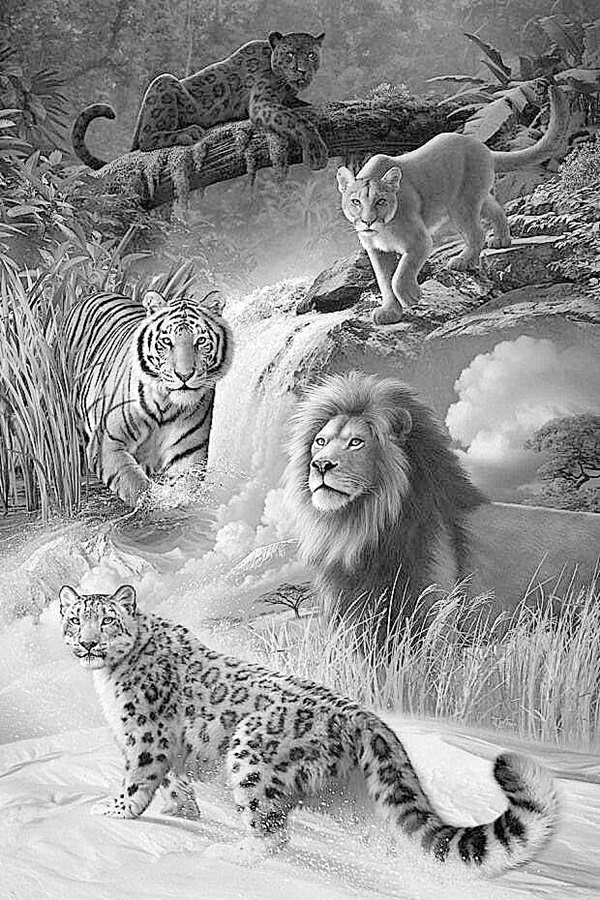 drawings of creatures draw 25 wild animals even if you don39t know how to draw drawings creatures of