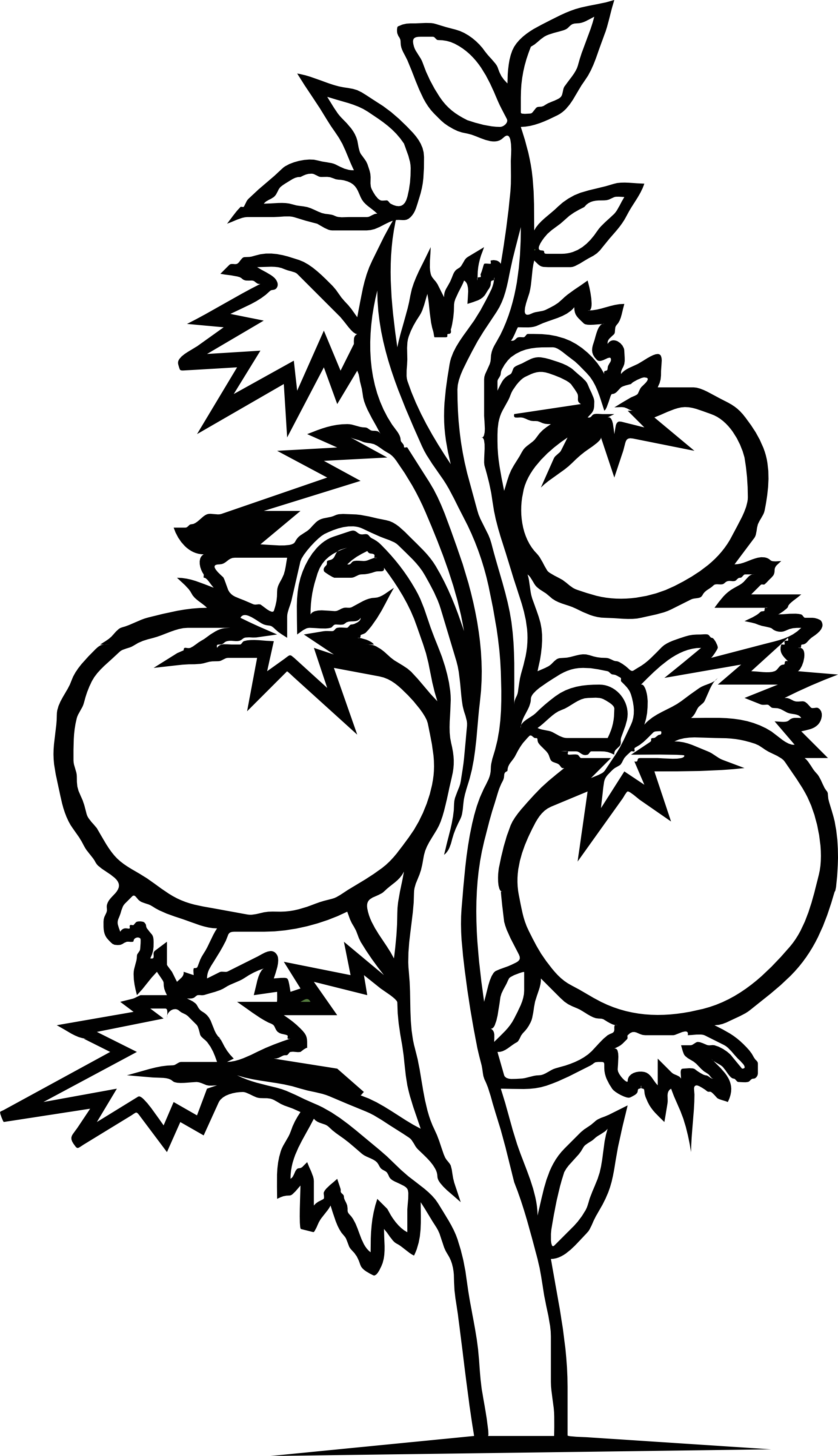 drawings of plants black and white hibiscus flowers with monstera leaves hand drawings plants of