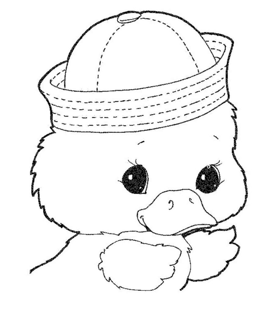 duck coloring pages cute little duck coloring page netart pages duck coloring