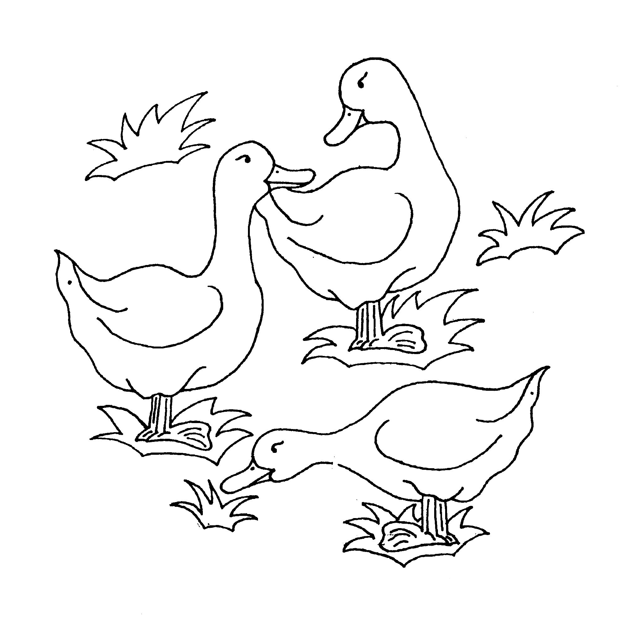 duck coloring pictures free easy to print duck coloring pages tulamama coloring pictures duck