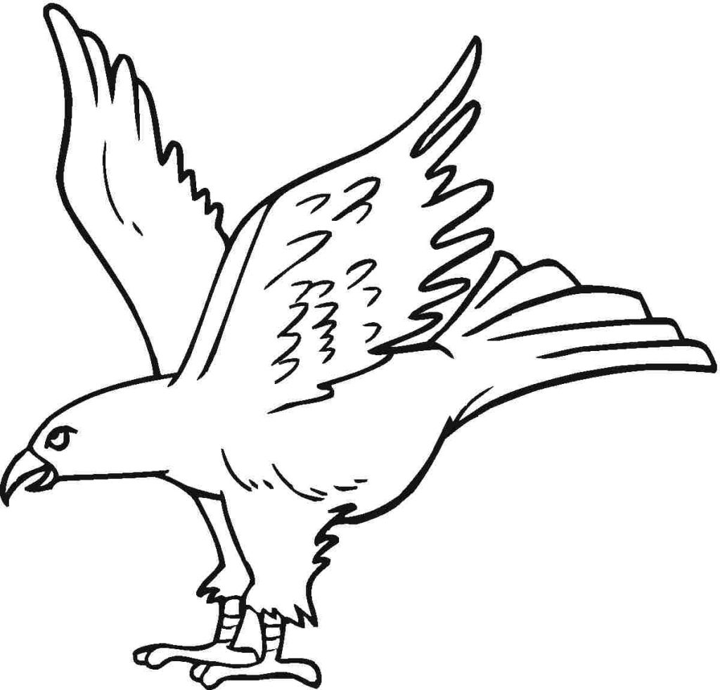 eagle printable bald eagle coloring pages download and print for free eagle printable