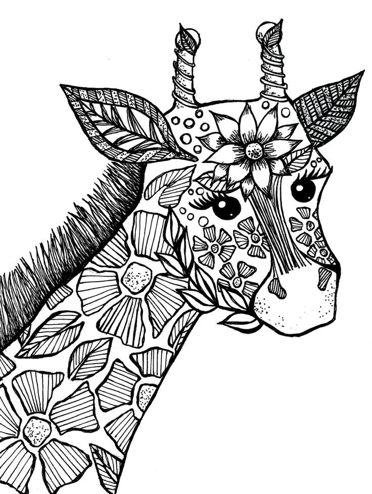 easy animal mandala coloring pages horse simple zentangle patterns horses adult coloring pages mandala animal easy coloring pages
