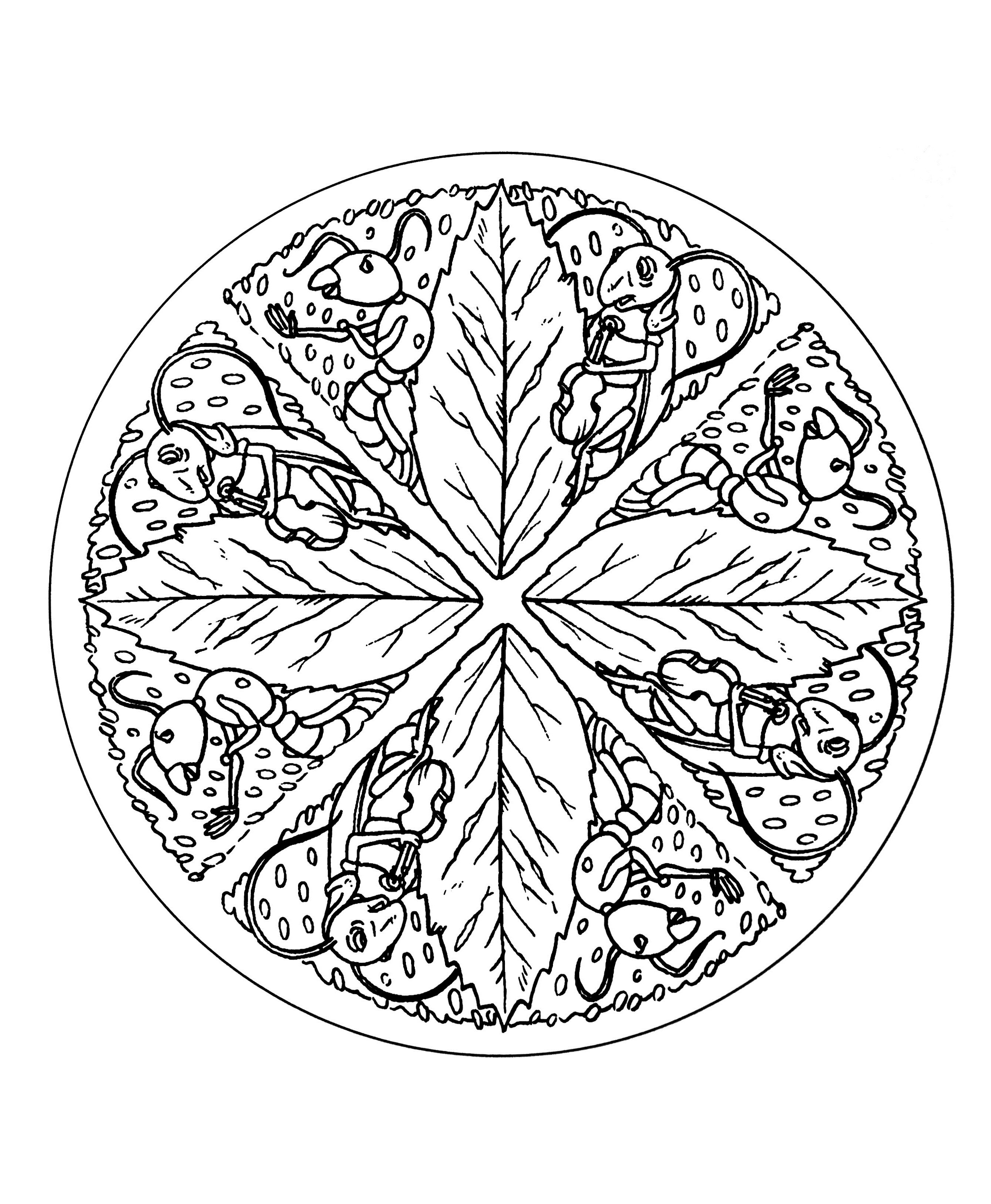 easy animal mandala coloring pages online mandala coloring free download educative mandala pages animal coloring easy